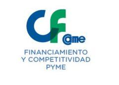 Encuesta Anual FinanCAME